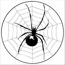 Signification du rêve de toile d'araignée