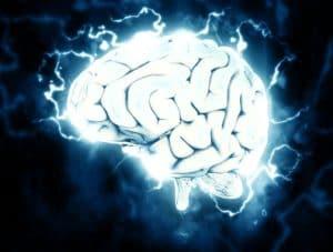 Le cerveau et les rêves: