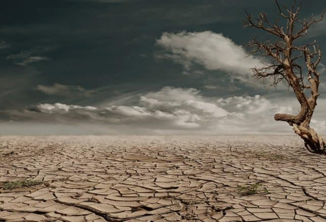 Que signifie rêver de terre ?