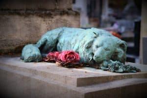Rêver de chien mort et son interprétation: