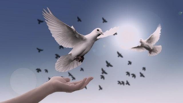 Que signifie rêver de paix ?