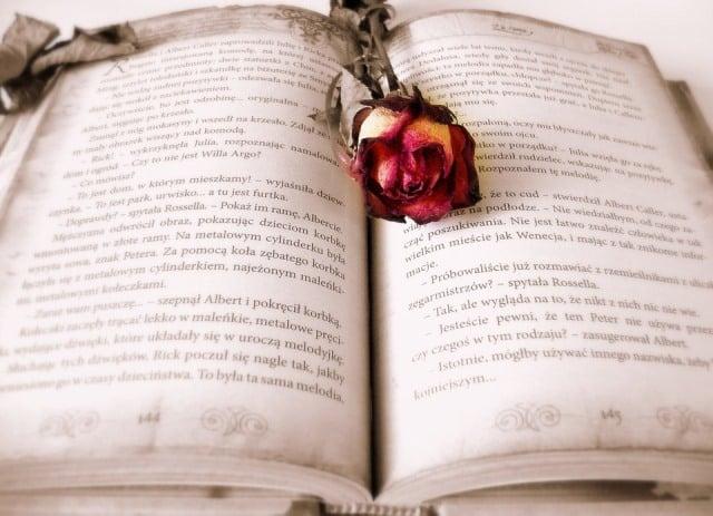 Le rêve de roman et sa signification: