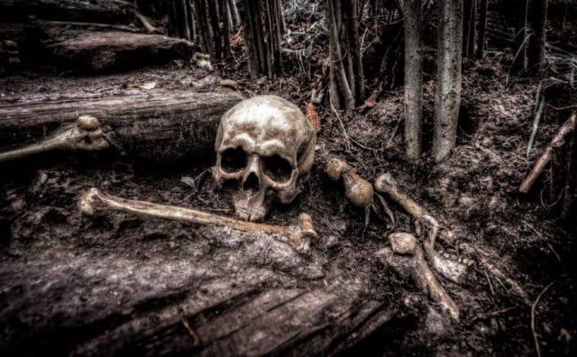 Que signifie rêver d'os ?