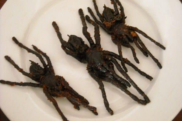 Que signifie un rêve de tuer une araignée ?