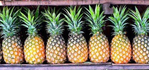 Que signifie un rêve de manger un ananas ?