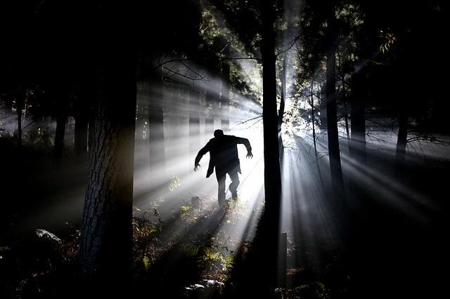 Que signifie rêver d'être poursuivi par un monstre ?