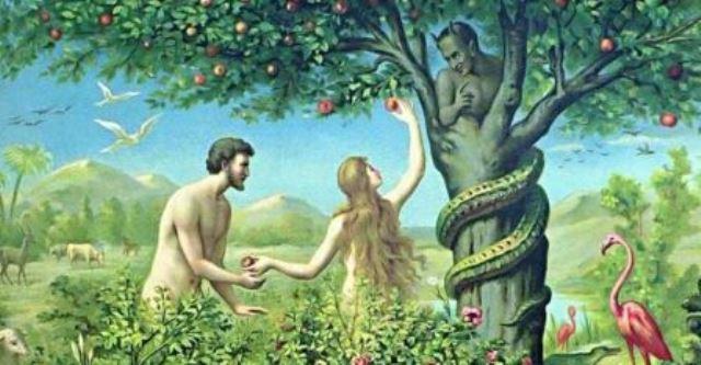 Que signifie rêver de serpent dans le jardin ?