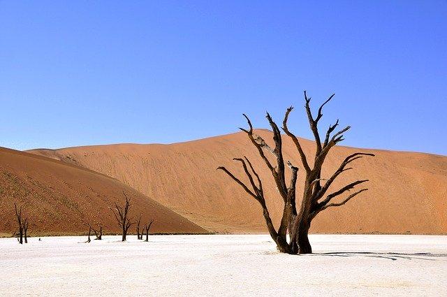 Que signifie rêver de sécheresse ?