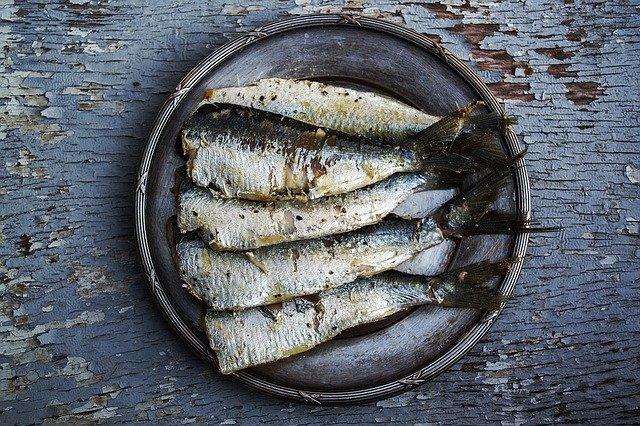 Que signifie rêver de sardine ?