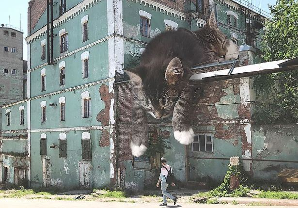 Pourquoi rêver de chat géant ?