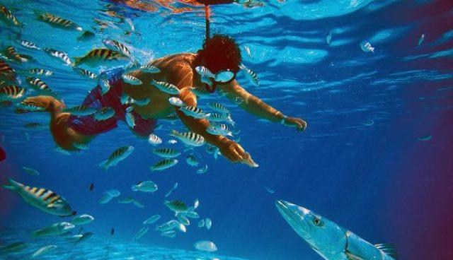 Que signifie rêver de nager avec des poissons ?