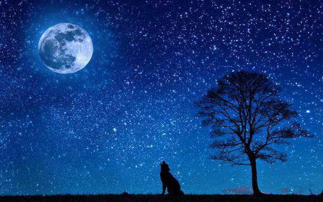 Que signifie rêver d'étoiles ?