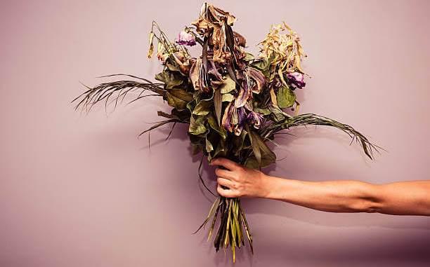 Que signifie rêver de fleurs fanées ou mortes ?