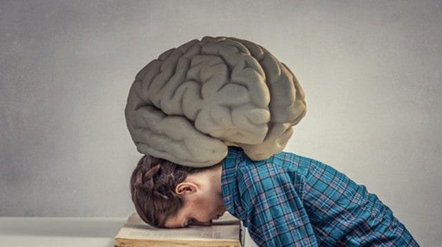 Que signifie rêver de cerveau ouvert ?